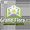 Кэшбэк в Grand-Flora.ru
