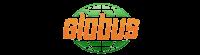 Кэшбэк в online.globus.ru